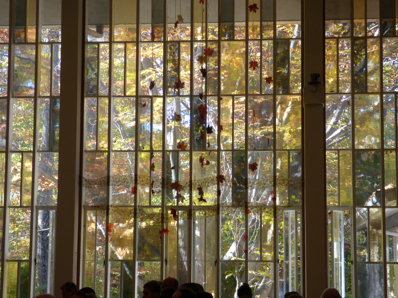 looking out the Cedar Lane Sanctuary Windows during a sunny fall day