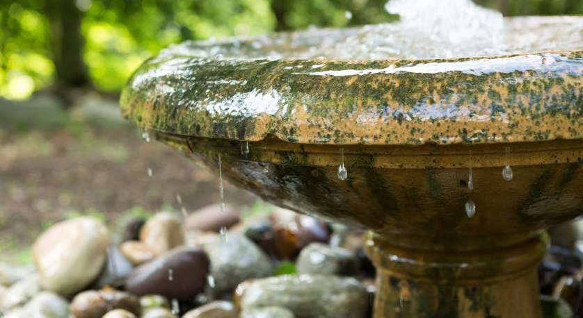 a bubbling fountain in Cedar Lane's memorial garden