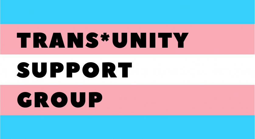 trans*unity support group promo image