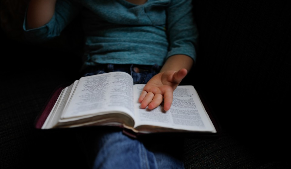 child holding a bible on their lap