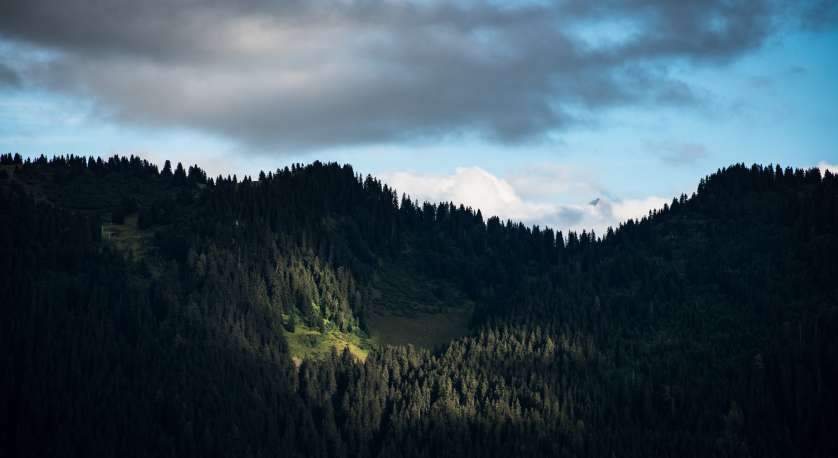 photo of some mountains with a patch of sunshine shining onto a spot in the trees