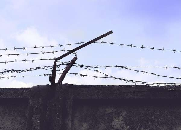 photo of a barbed wire fence that's broken down some